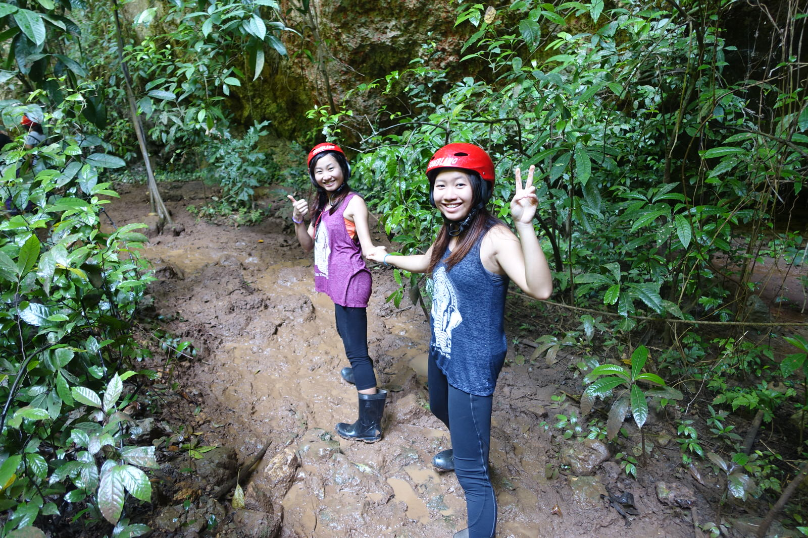 jomblang cave forest